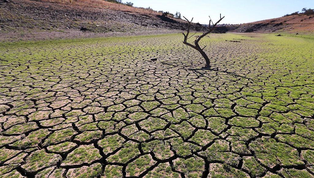 Día contra Desertificación