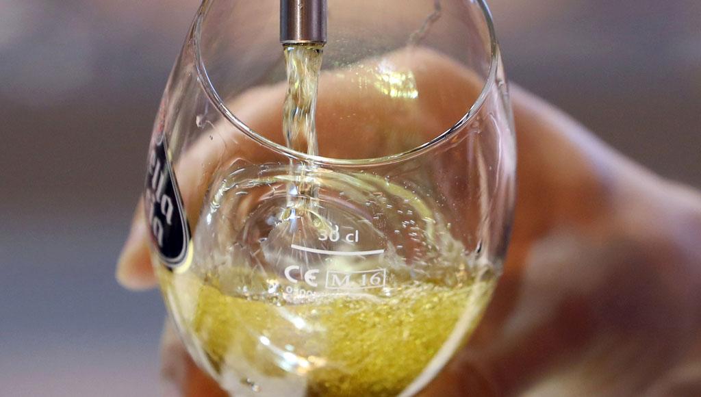 Día Internacional de la Cerveza (7 de Agosto)
