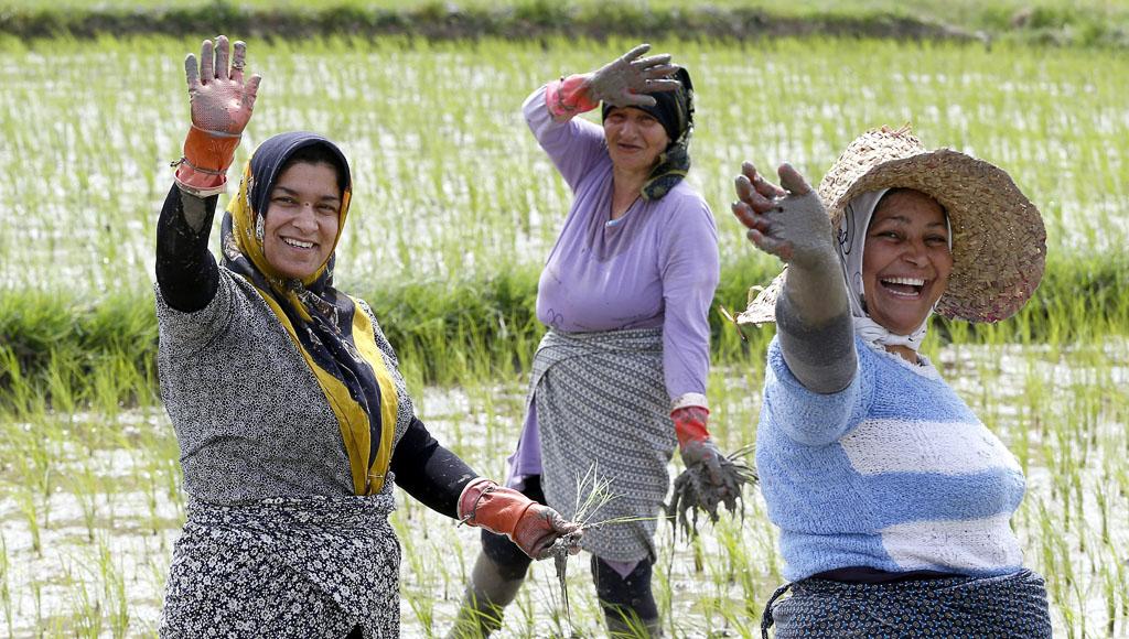15 de Octubre, Día Internacional de las Mujeres Rurales